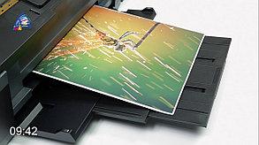Цветная Цифровая Печать А3, фото 2