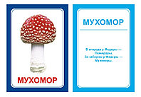 Комплект карточек Логопедка Р