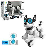 Интерактивная собака-робот JZL 20173-1