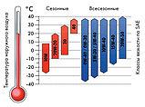 Масло TRIATHLON синтетика ENDURANCEIII-5W30, 5 л., фото 2