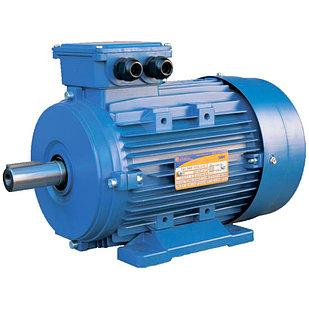 Электродвигатель 5АИ 100 S4 3/1500 IM 1081