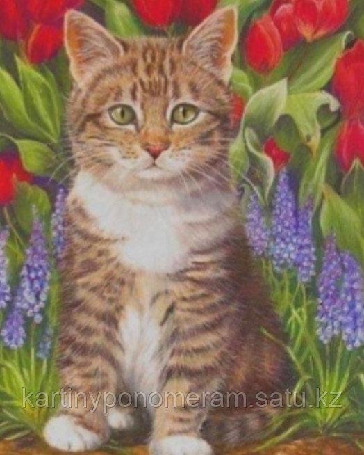 "Картина стразами на подрамнике (40х50 см) ""Котенок в цветах"" MB-656"