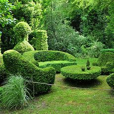 Ландшафтный дизайн, озеленение и благоустройство