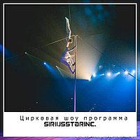 Цирковая шоу программа