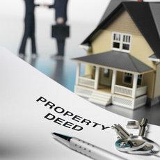 Услуги проката и аренды