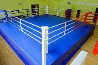 Ринг боксерский 6 х 6 м с помостом 7,65 х 7,65, фото 1