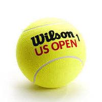 Мяч для большого тенниса Wilson, фото 1