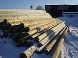 Установка деревянных опор ЛЭП, Строительство линий электропередач и связи на столбах ЛЭП высотой от 6,5 до 11, фото 5