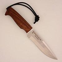 Нож «Свирепый» стандарт