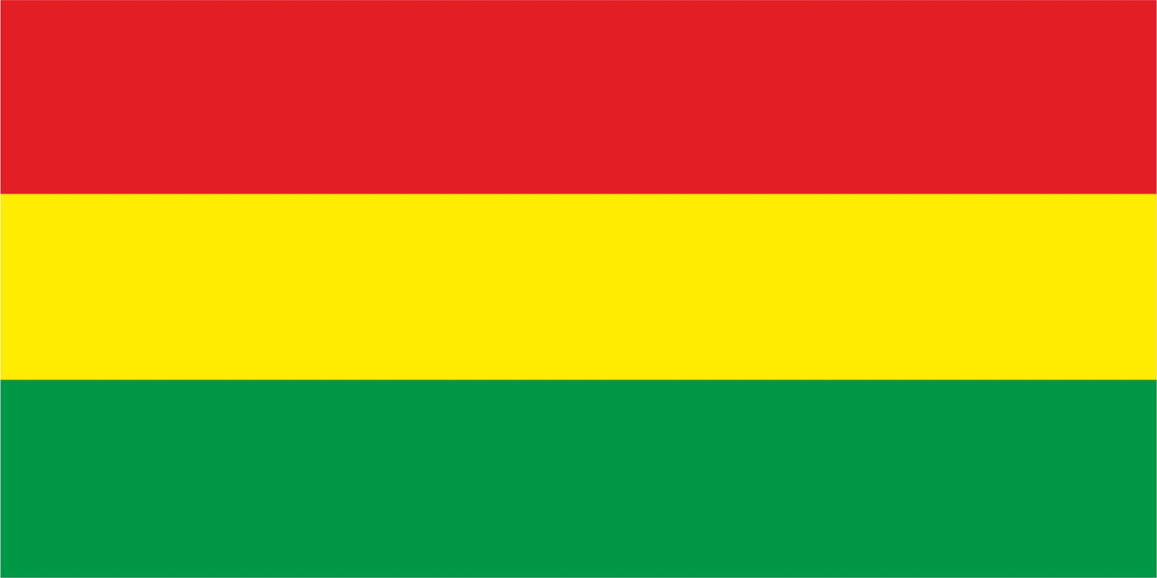Флаг Боливии размер 1 х 2 метра.
