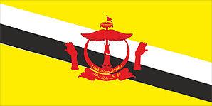 Флаг Бруней размер 1 х 2 метра.