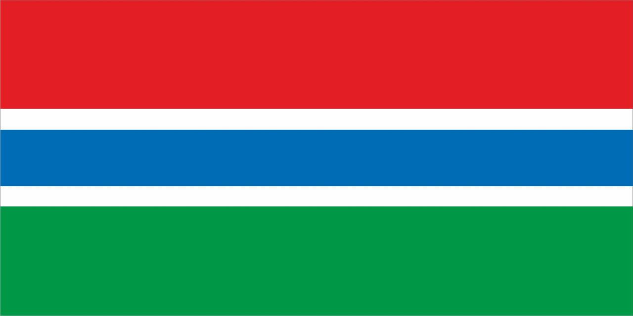 Флаг Гамбия размер 1 х 2 метра.