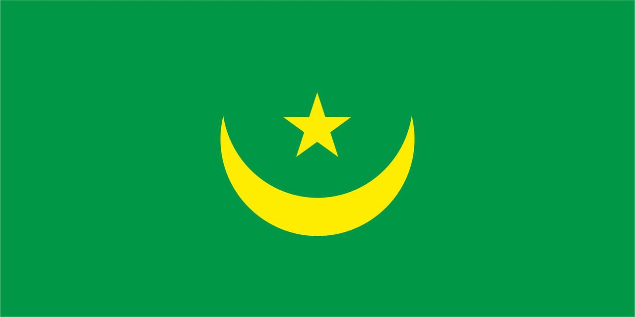 Флаг Мавритании размер 1 х 2 метра.