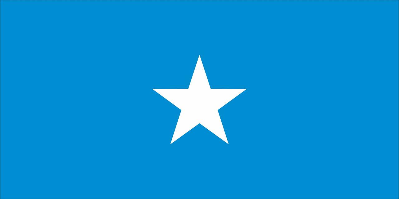 Флаг Сомали 1 х 2 метра.