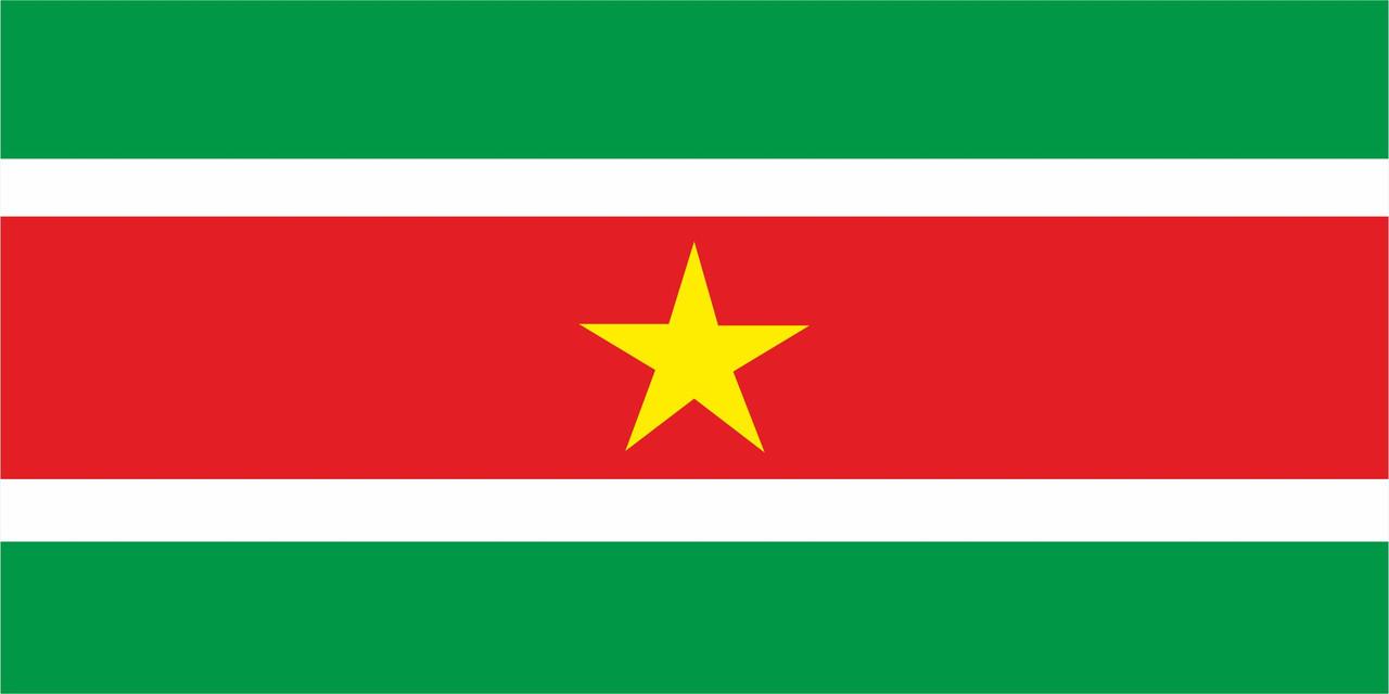 Флаг Суринама 1 х 2 метра.