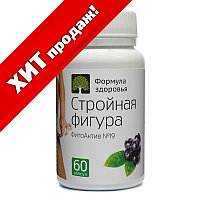 ФитоАктив №19 Стройная фигура, черника (60 капс.)