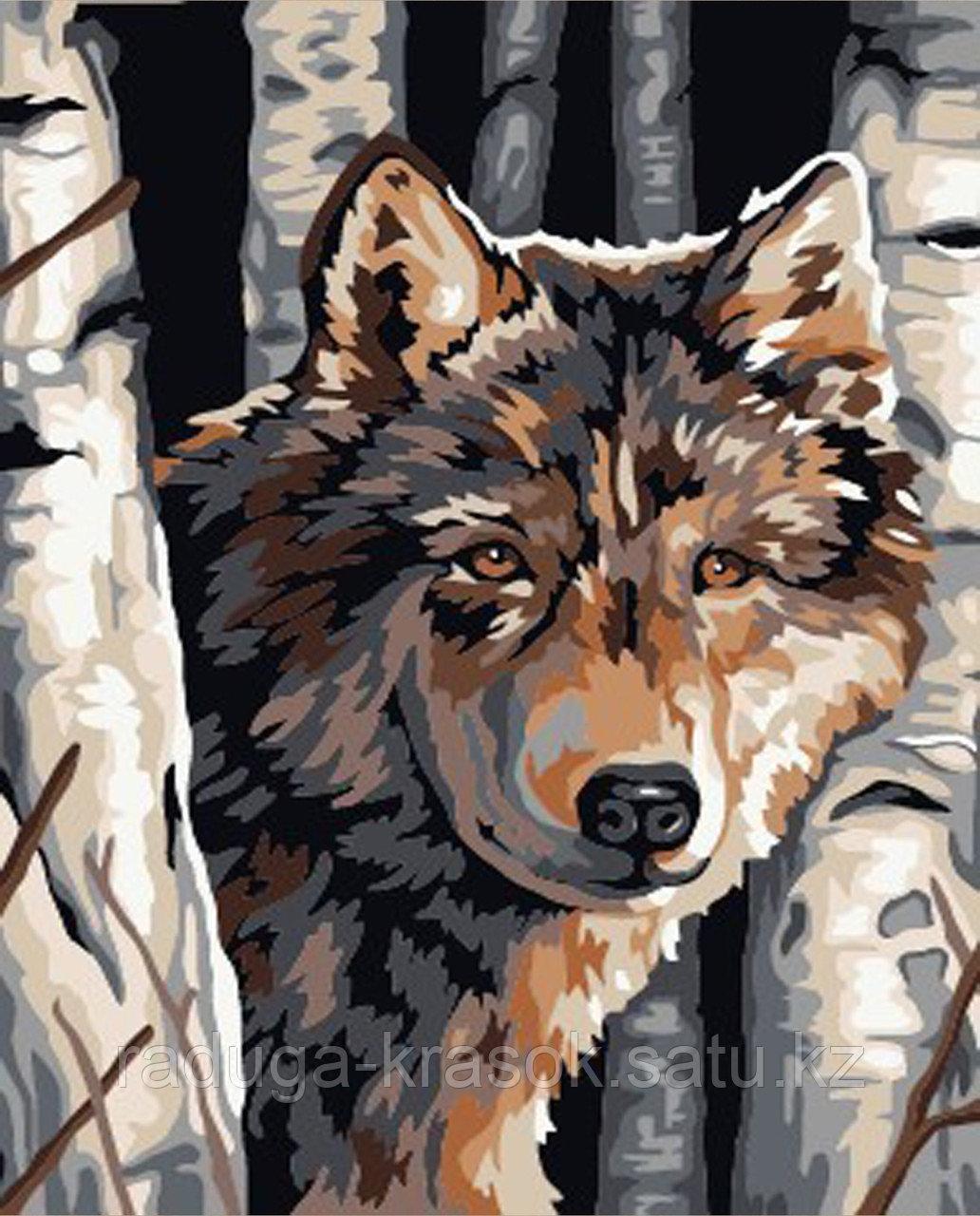 """Картины стразами на подрамнике """"Волк"""""""