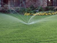 Системы полива газонов, кустарников и деревьев