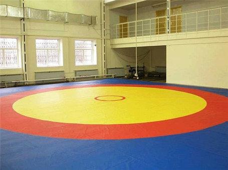 Ковер борцовский трехцветный (покрышка) 10м х 10 м соревновательный, фото 2