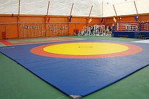 Ковер борцовский трехцветный 6х6м с покрышкой, толщина 5 см, фото 2