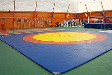 Ковер борцовский трехцветный 12х12м с покрышкой, толщина 5 см, фото 2