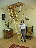 Чердачная лестница 70х130х305 FAKRO LWS SMART  тел.Whats Upp. 87075705151, фото 4