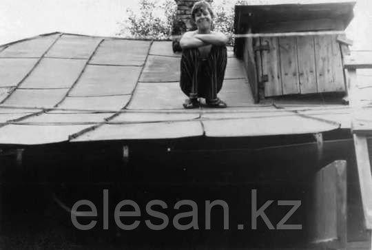 Фальцевая крыша в СССР
