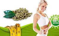 Зеленый кофе(Green coffee 800) для похудения , фото 1