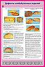 Дефекты хлебных изделий