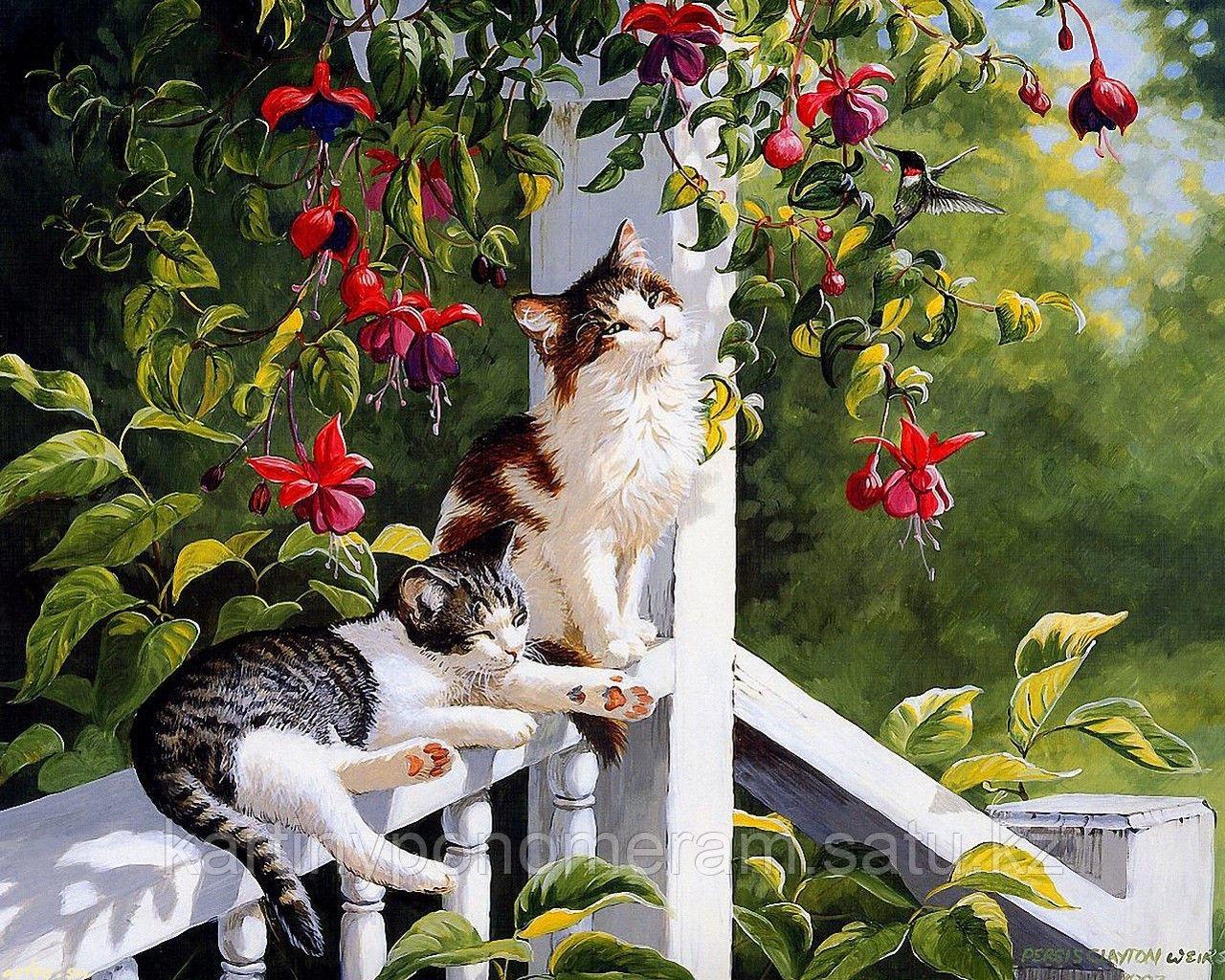 """Картина по номерам """"Кошки на веранде"""""""