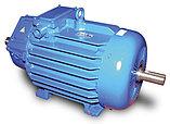 Электродвигатель асинхронный АДМ, фото 2