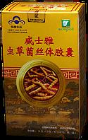 Таблетки кордицепса китайского