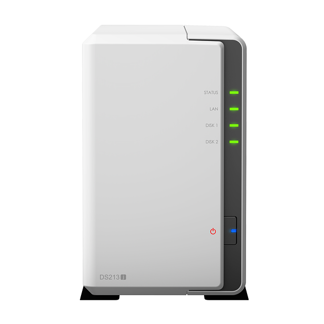 NAS-сервер Synology DiskStation DS213j - Ruba Technology в Алматы