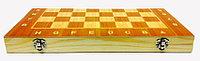 Шахматы 2в1 24 см х 24 см