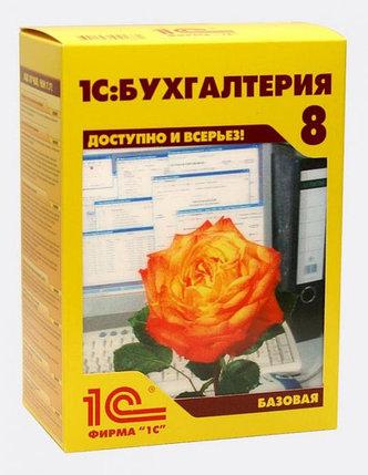 1С:Бухгалтерия 8 для Казахстана. Базовая версия, фото 2