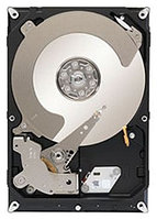 Жесткий диск HDD Seagate SATA3 1Tb Constellation CS 7200 rpm 64Mb