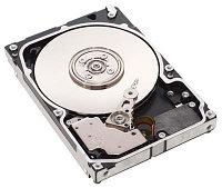 Жесткий диск 1000 Gb Seagate