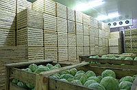 Овощехранилища