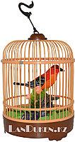Интерактивная поющая птичка в клетке HL 507 B (музыкальная игрушка)