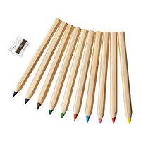 МОЛА Цветной карандаш
