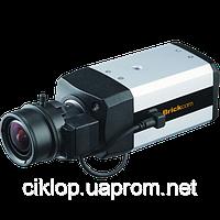 Камера видеонаблюдения FB-300Np