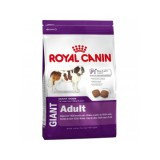 Сухой корм для собак очень крупных пород Royal Canin GIANT ADULT PRO