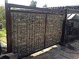 Металлические ворота c экраном из профлиста, фото 2