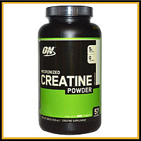 ON Creatine Monohydrate 300гр