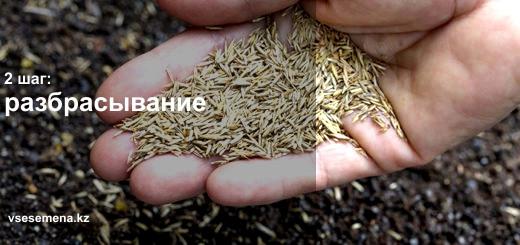 разбрасывание семян