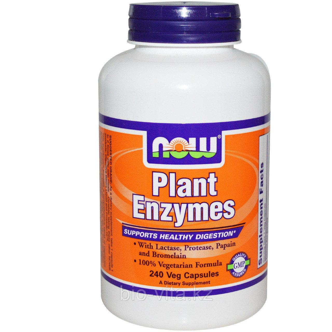 Now Foods, Растительные ферменты, 240 растительных капсул.