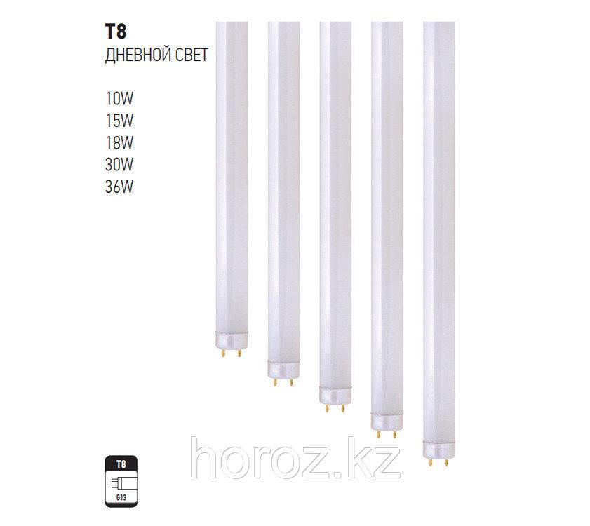 Люминесцентная лампа T8 18 Ватт дневной свет