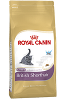 Royal Canin BRITISH SHORTHAIR KITTEN, сухой корм для кошек персидской породы, 10 кг