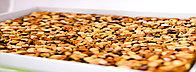 Пахлава с орехами Падишах, фото 1