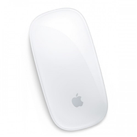 Apple wireless magic mouse (mb829zm/b)